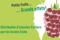 GRANDE DISTRIBUTION D'ARBRES FRUITIERS AU MARCHE DURABLE DU CHANT D'OISEAU